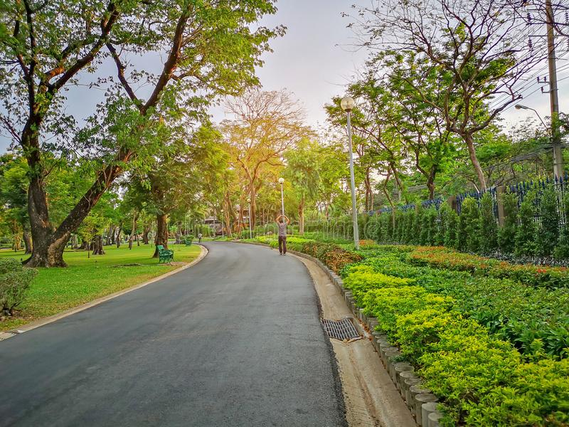 A black asfalt concrete jogging track in a public park, a man walking on curve shape walkway under evergreen leaves trees royalty free stock images