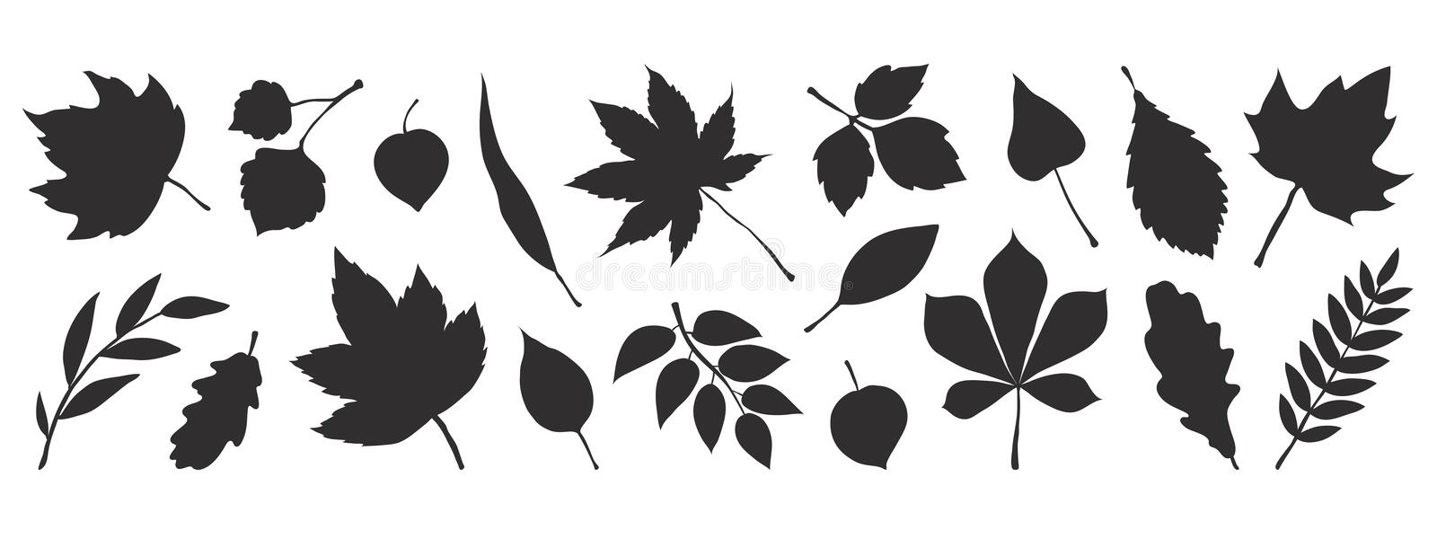 Black autumn leaves. Decorative fall elements isolated on white background. Vector foliage silhouettes for greeting. Black autumn leaves. Decorative fall stock illustration