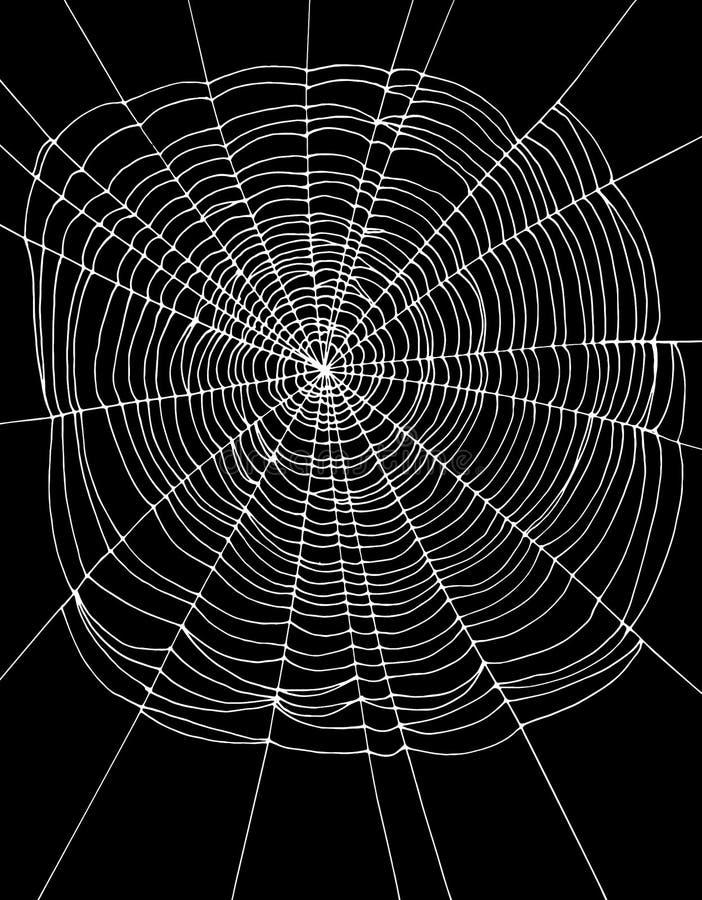 Black Spider And Spiderweb - Kids Illustration Stock ...