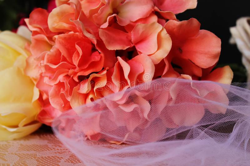 Flowers and Lace. Black background with wedding flowers and lace royalty free stock images