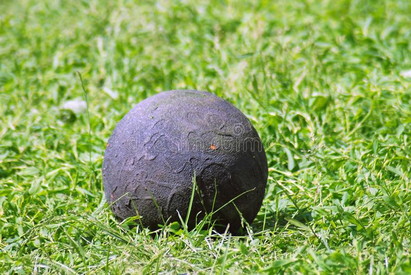 Black ball on greed grass. royalty free stock photography