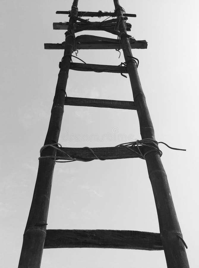 Black Bamboo Ladder During Daytime Free Public Domain Cc0 Image