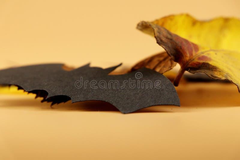 A black bat with autumn leave on orange background. Beautiful and nice happy halloween. Celebrating royalty free stock photo