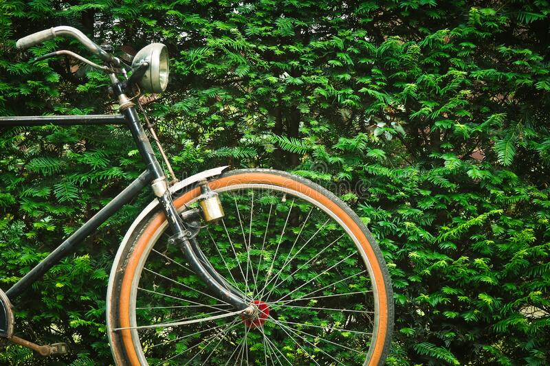 Black Beach Cruiser Bicycle Near Green Hedge During Daytime Free Public Domain Cc0 Image