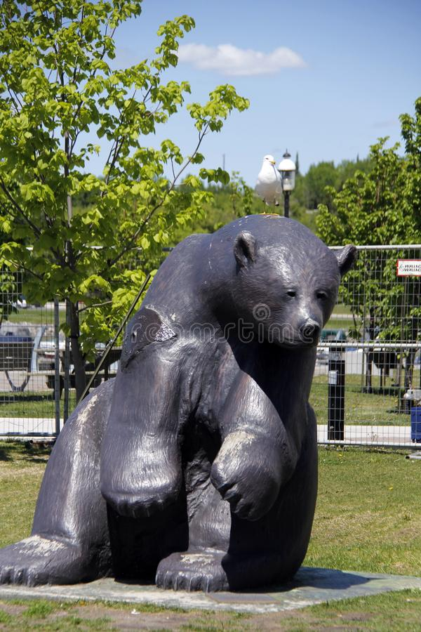 Black Bear Statue at Harbour, Kenora, Ontario, Canada stock image