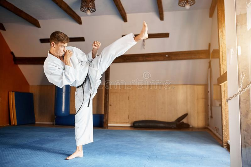Black belt karate fighter training hight kick stock image