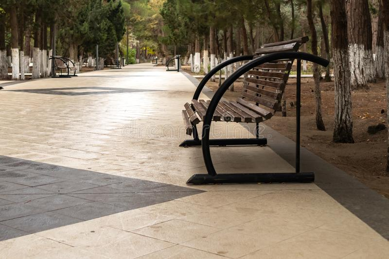 Black bench in peaceful park in spring. Old bench in the park stock photos