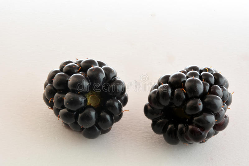 Black BlackBerry closeup, macro photo, royalty free stock images