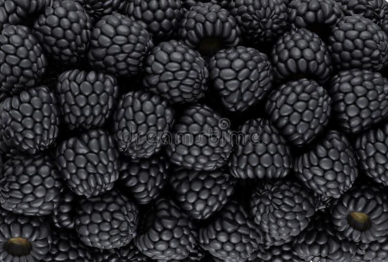 Black Blackberry Texture Or Background Stock Image