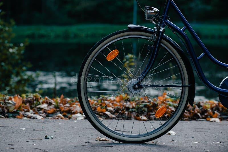 Black And Blue Cruiser Bike Free Public Domain Cc0 Image