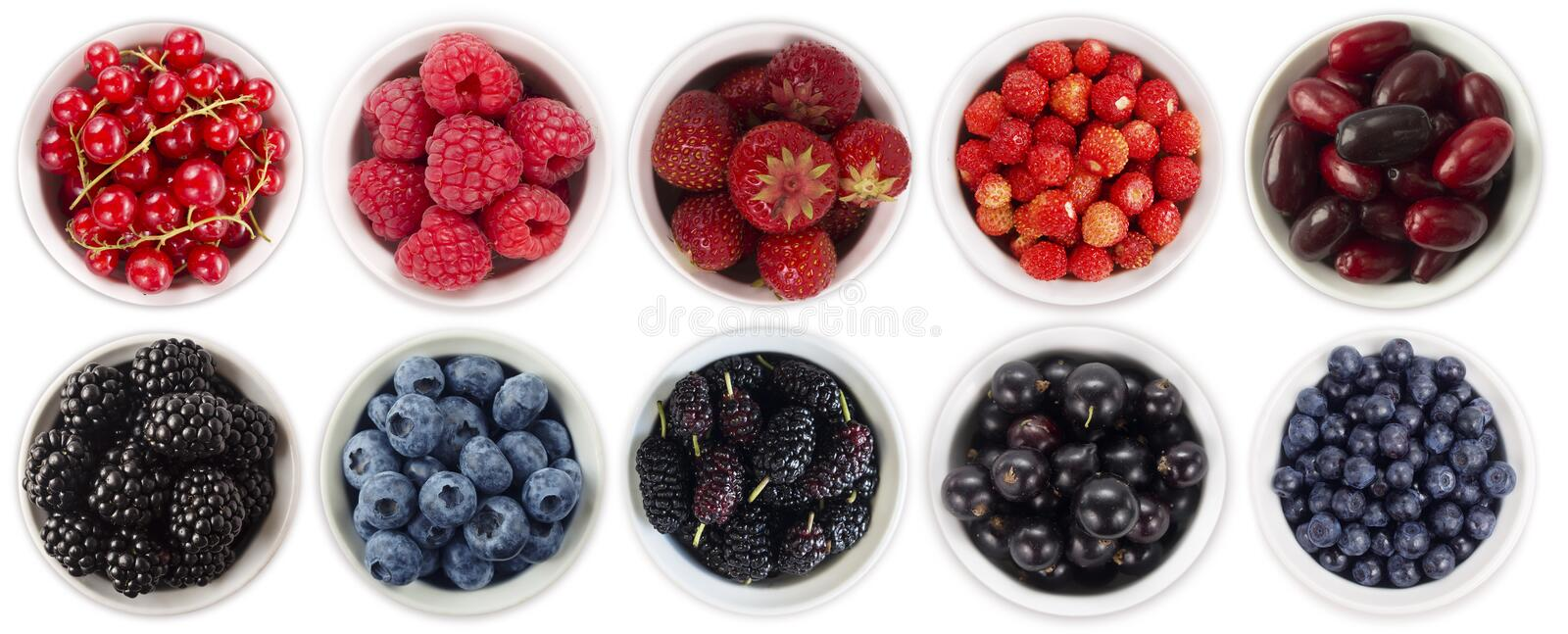 Black-blue and red berries isolated on white background. Collage of different fruits and berries. Blueberry, blackberry, mulberry, royalty free stock photo