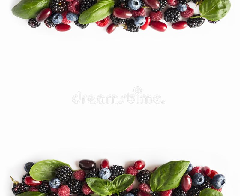 Black-blue and red berries isolated on white. Ripe blackberries, blueberries, raspberries, cornels and basil leaves on white backg. Round. Berries at border of stock photo