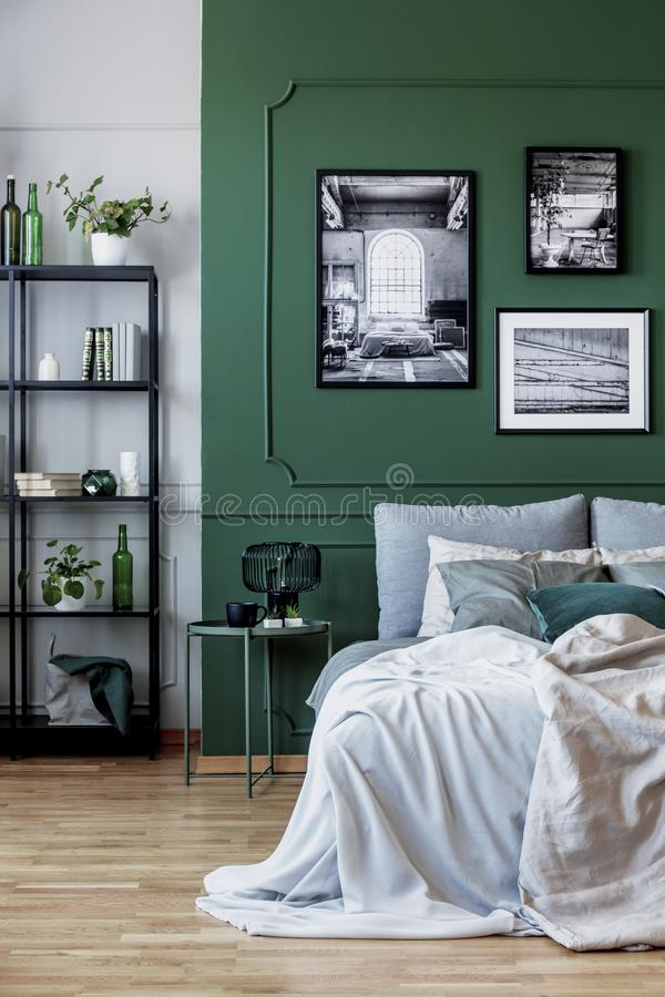 Black bookshelf with plants in the corner of chic bedroom interior with green wall. Black bookshelf with plants in the corner of chic bedroom interior with wall royalty free stock image