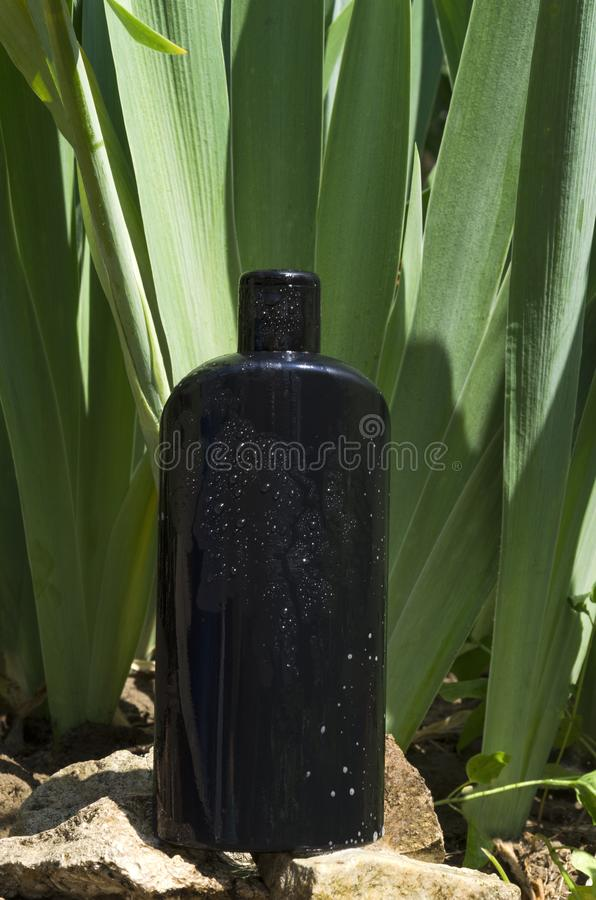 Black bottle of shampoo on the stones against exotic leaves.Eco cosmetics royalty free stock images