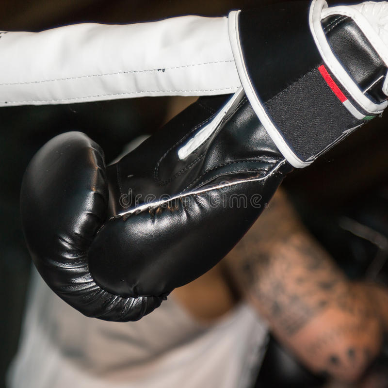 Black Boxing Glove Tied to Ring Ropes stock images