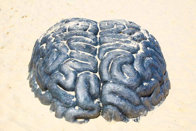 A black brain is a sculptural artwork at the Sculpture by the Sea annual events free to the public sculpture exhibition. SYDNEY, AUSTRALIA. – On October royalty free stock photo