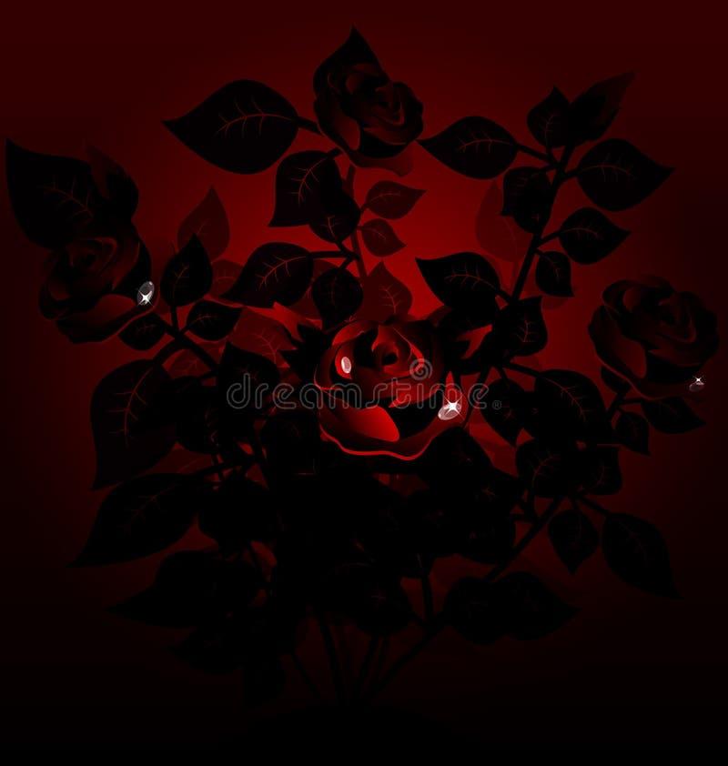 Download Black Bush Of Roses Stock Image - Image: 20842941