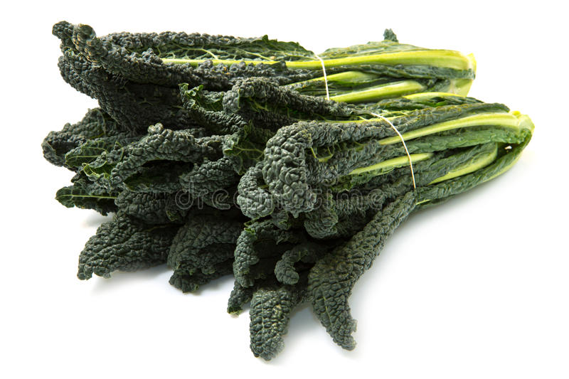 Black cabbage royalty free stock photography