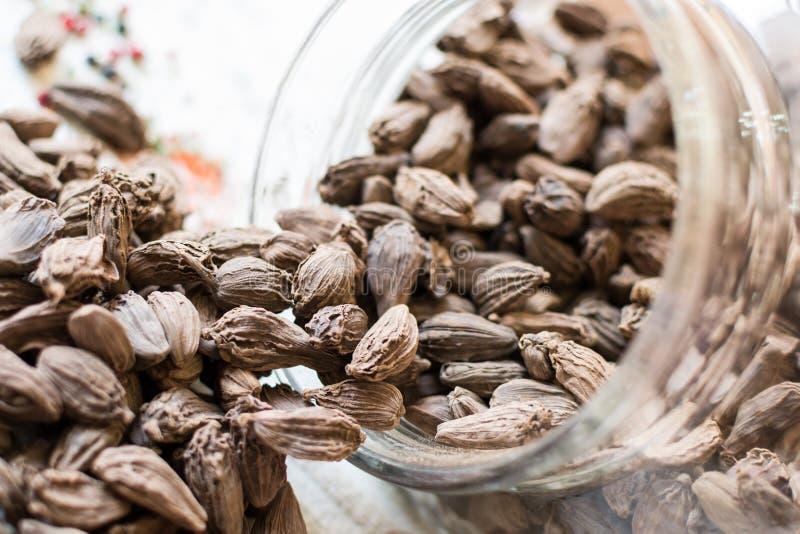 Black cardamom pods stock images