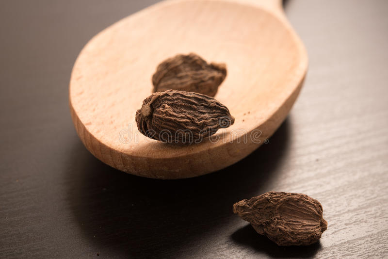 Black Cardamom. On a wooden spoon stock image