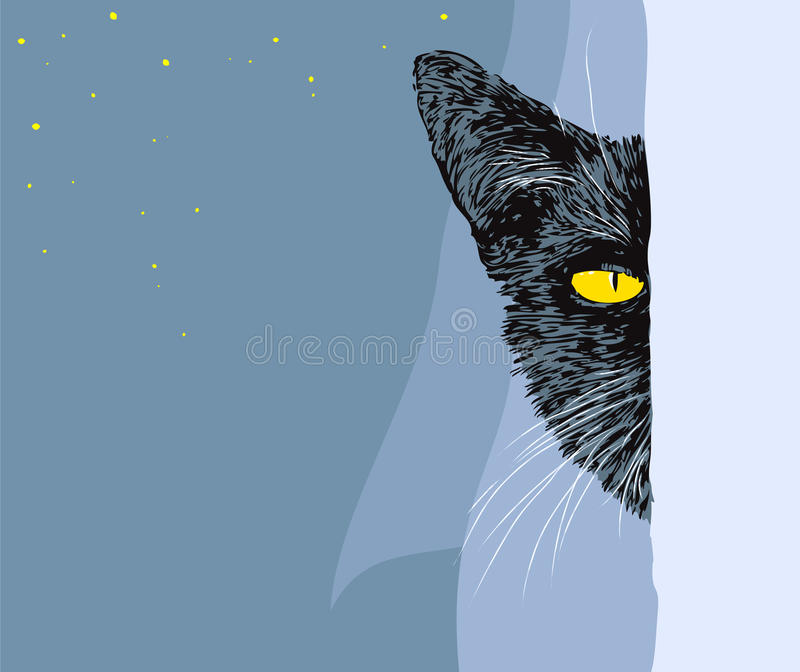 Download Black cat stock vector. Image of witchcraft, drawing - 16345820