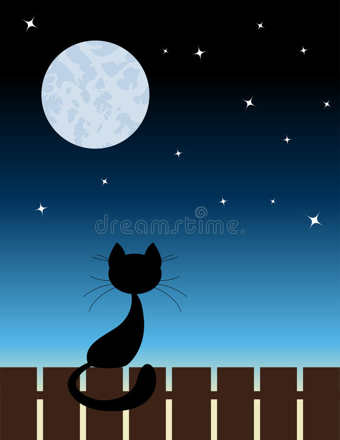 Download Black cat stock vector. Image of white, touch, tail, dusk - 26528509