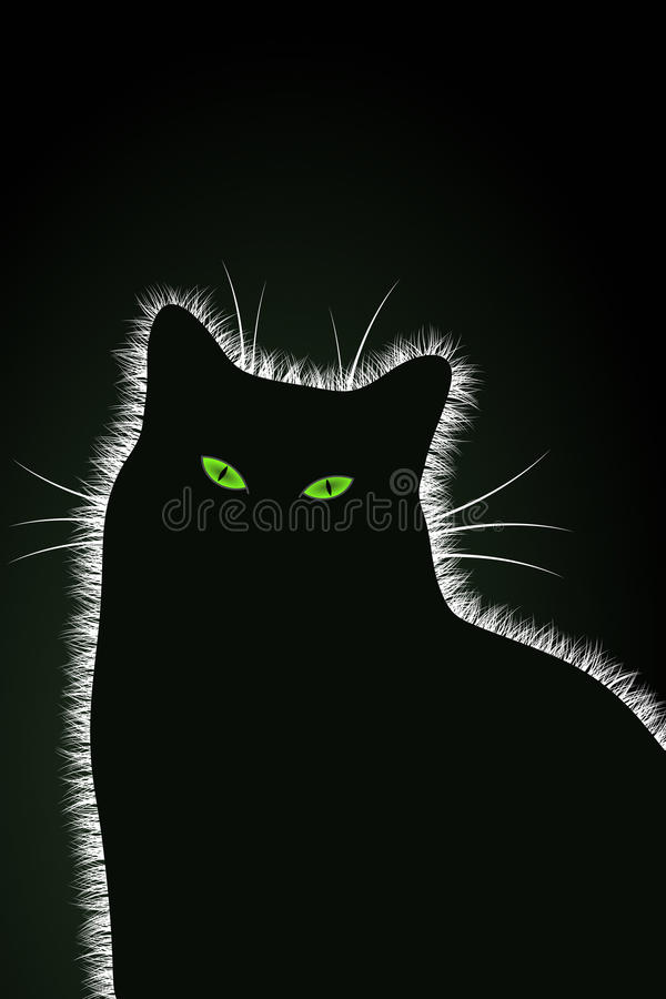 The Black Cat royalty free stock image