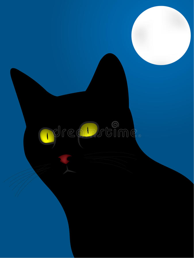 Free Black Cat Stock Images - 9517494