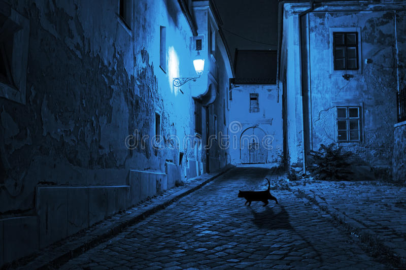 Black cat crosses the deserted street. At night royalty free stock image