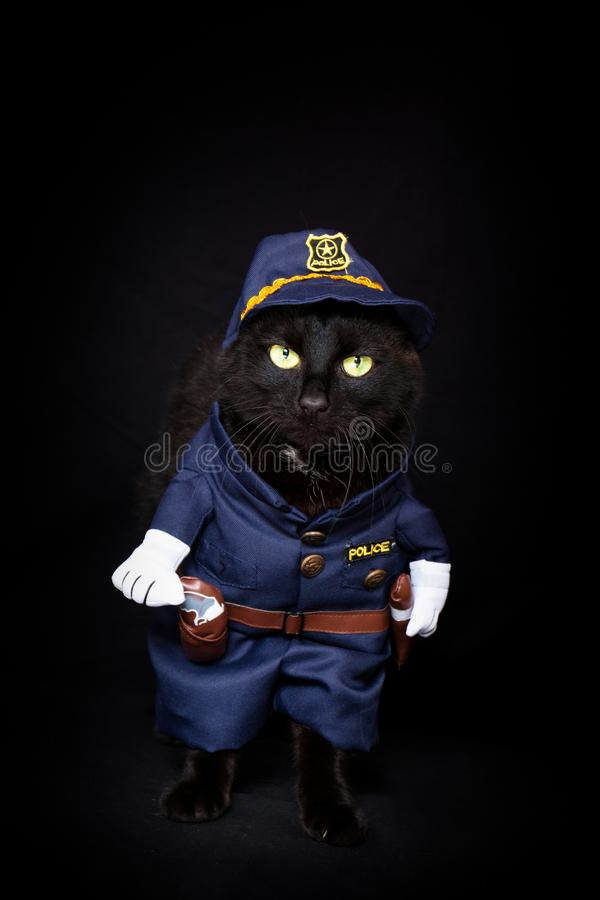 Black cat dressed as a police officer. Against a dark background stock image