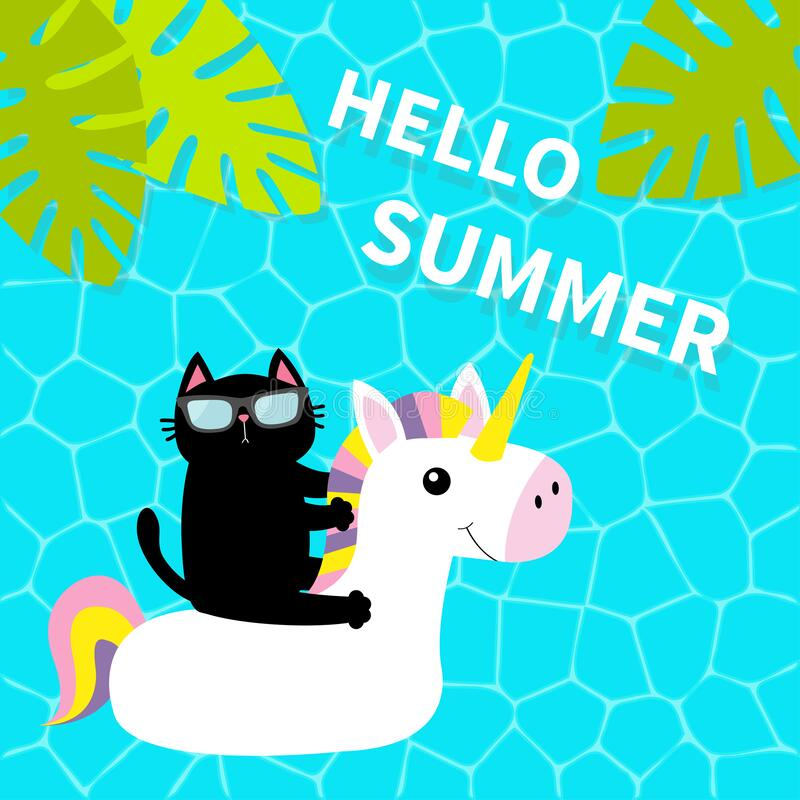 Free Black Cat Floating On White Unicorn Pool Float Water Circle. Swimming Pool Water. Hello Summer. Top Air View. Sunglasses. Lifebuoy Royalty Free Stock Photography - 180112827