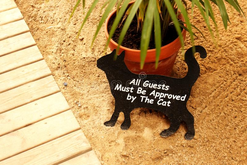 Black cat funny welcome sign on sand beach near wooden plank flooring royalty free stock image