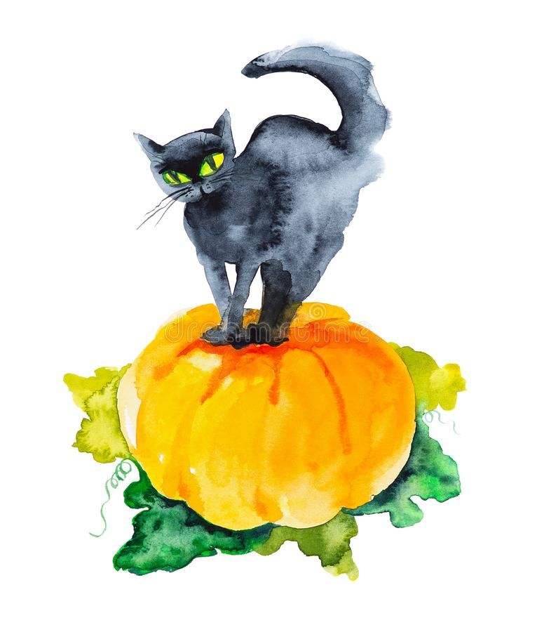 A black cat with green eyes stands on a huge pumpkin on Halloween. Watercolor illustration isolated on white background.  stock photos