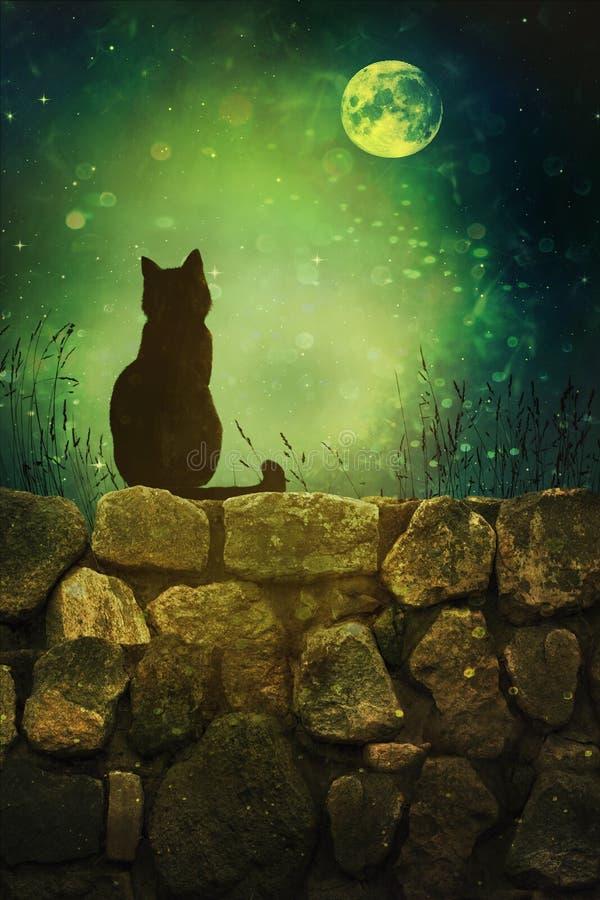 Black cat on rock wall Halloween night vector illustration