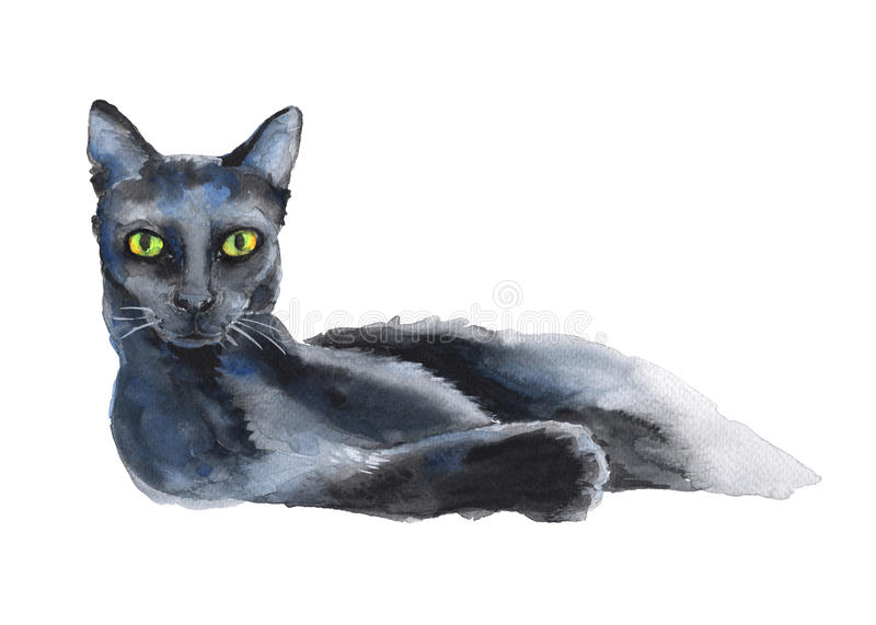 Black Cat A Stand Alone Sketch The Symbol Of Halloween Waterc