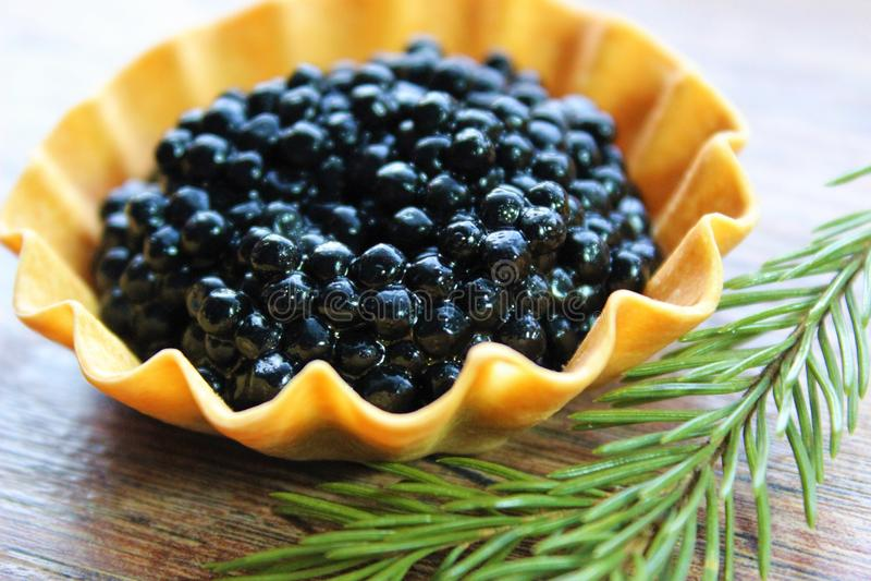 Black caviar. With a fir branch stock image