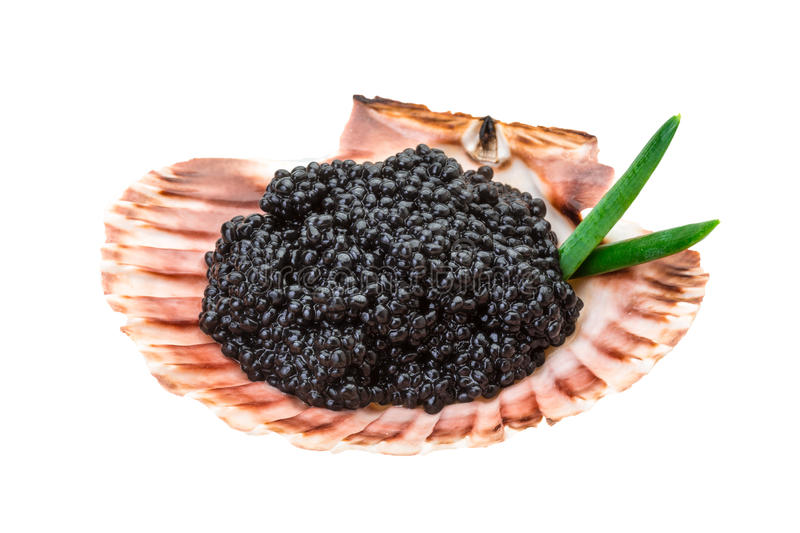 Download Black caviar stock image. Image of expensive, breakfast - 39505163