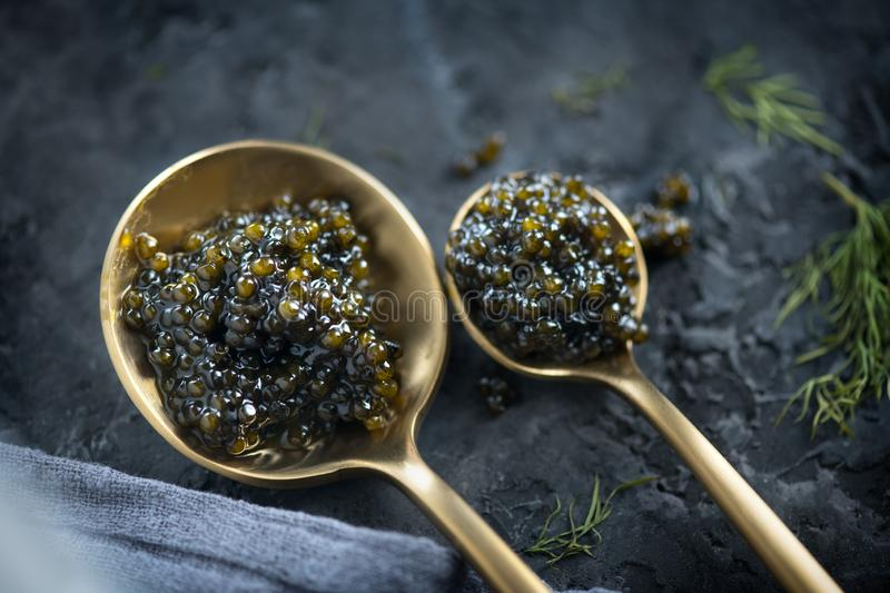 Black Caviar in a spoon on dark background. High quality real natural sturgeon black caviar close-up. Delicatessen. Texture of expensive luxury caviar. Food stock image