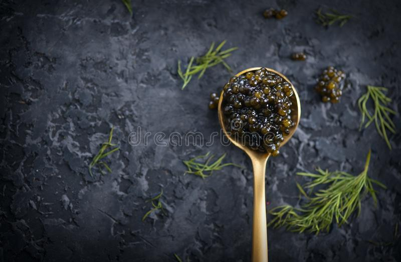 Black Caviar in a spoon on dark background. High quality real natural sturgeon black caviar close-up. Delicatessen. Texture of expensive luxury caviar. Food royalty free stock photo