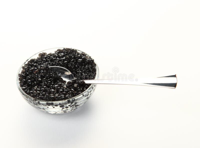 Black caviar on white royalty free stock photo