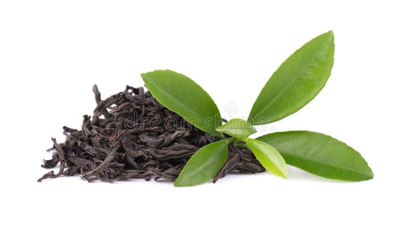 Black Ceylon tea with bergamot, isolated on white background. royalty free stock photography