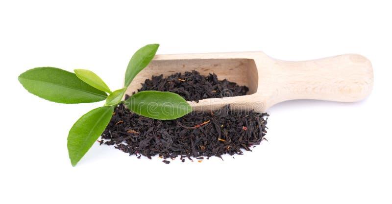 Black Ceylon tea with flower petals and bergamot, isolated on white background. stock images