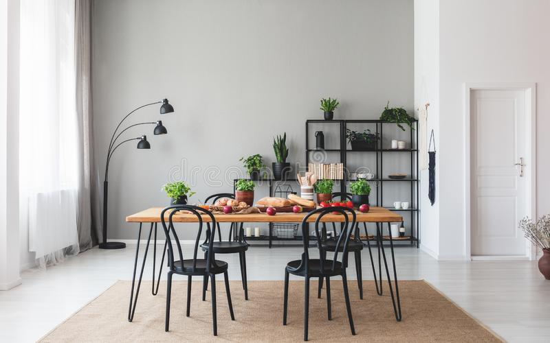 Black chairs at wooden table with food in grey dining room interior with plants and lamp. Real photo royalty free stock photography