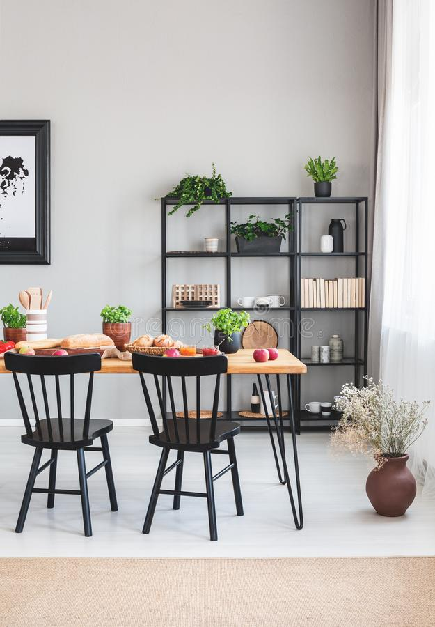Black chairs at wooden table in grey dining room interior with flowers and brown carpet. Real photo royalty free stock photography