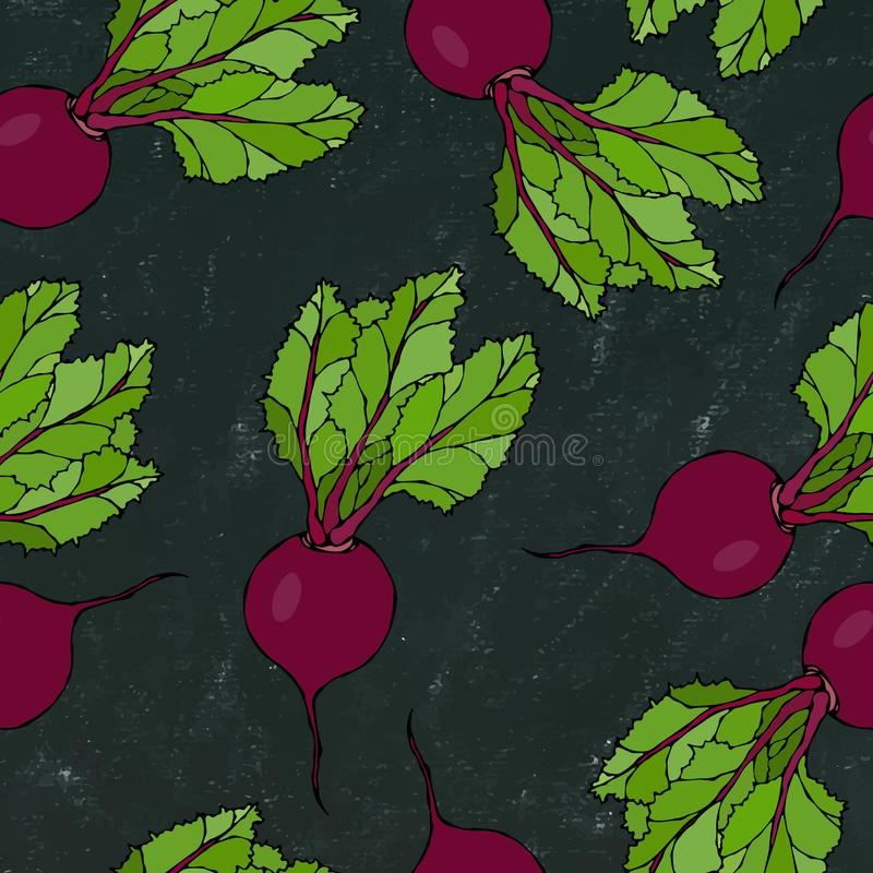Black Chalk Board. Seamless Background of Ripe Beets. Endless Pattern of Beetroot with Top Leaves. Fresh Vegetable Salad. Hand Dra. Wn Vector Illustration stock illustration