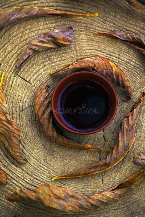 Black Chinese Tea Autumn garden leafs stock photography
