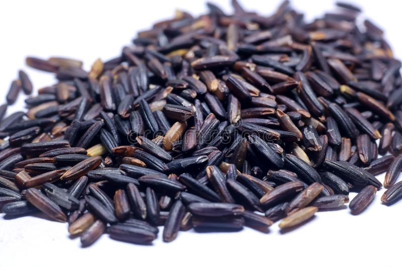 Black closeup crossbred hom jasmine nil purple raw rice riceberry thai agriculture glutinous vitamin fiber food organic macro n. Ature berry cooking natural dry royalty free stock photography