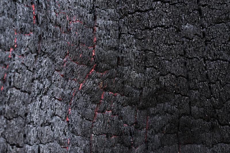 Black Coal Like Burned Wooden Surface. Texture of a burned tree showing it´s wooden surface looking like black coal with white reflections and round spots of stock photos