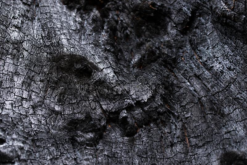 Black Coal Like Burned Wooden Surface. Texture of a burned tree showing it´s wooden surface looking like black coal with white reflections and round spots of royalty free stock images