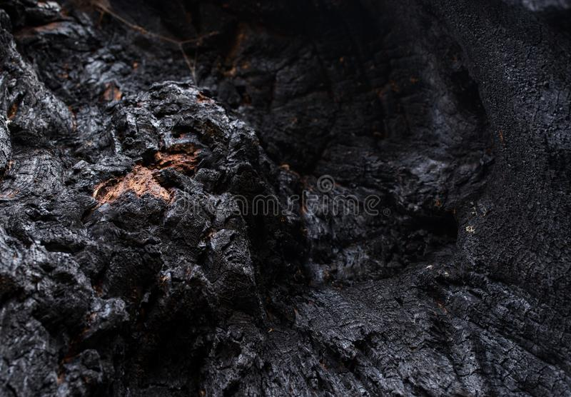 Black Coal like burned Wooden Surface. Texture of a burned tree showing it´s wooden surface looking like black coal with white reflections and round spots of royalty free stock photos
